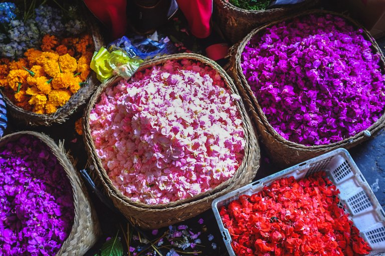 Several colorful flowers for the daily offerings in the Sindu market, Bali