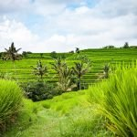UNESCO World Heritage in Bali